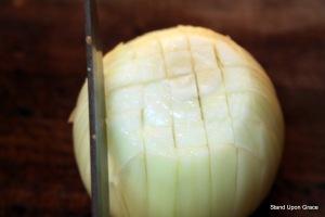 onion 1