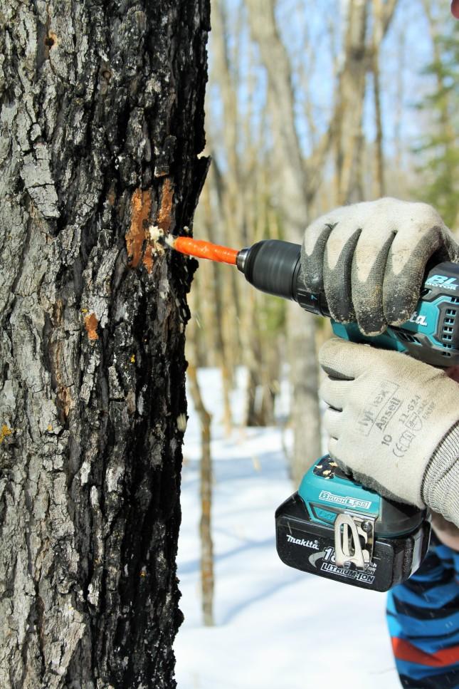 Diy Wood Tap And Die Set Wooden Pdf Open Shelf Vanity Plans Glossy16ecn